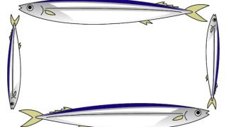 秋刀魚さんま枠フレームイラスト