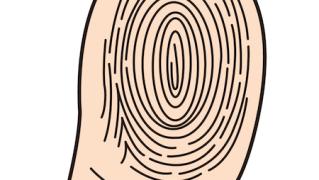 親指の指紋イラスト
