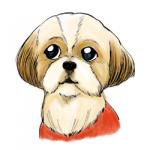 シーズー犬ペン画イラスト