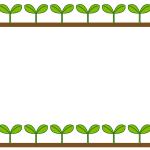 若葉二葉の芽イラストフレーム枠