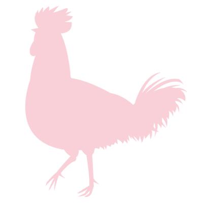 ニワトリ鶏シルエット影絵イラストピンク